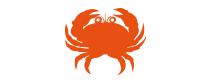 Petit crabe VITAM