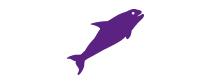 Killer Whales VITAM