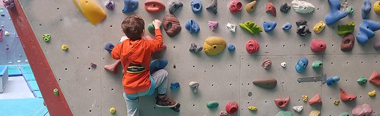 bébés grimpeurs