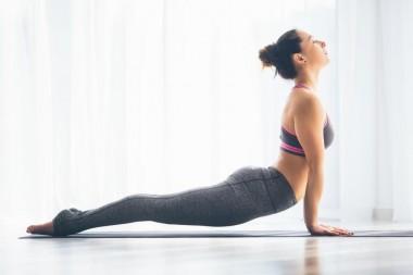 Cours découverte Yoga du dos